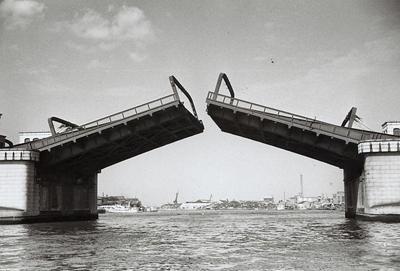 隅田川駅跳上橋